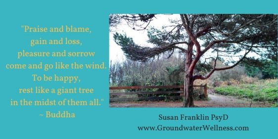 Praise and blame, gain and loss, pleasure and sorrow come and go like the wind. To be happy, rest like a giant tree in the midst of them all.Read more at